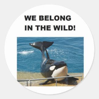Orca som vi hör hemma i vilddesignen runt klistermärke