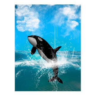 Orcabanhoppning Vykort