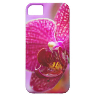Orchid iPhone 5 Fodraler