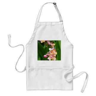 Orchidaceaeförkläde Förkläde