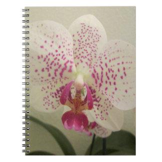 Orchidlilastänk Anteckningsbok