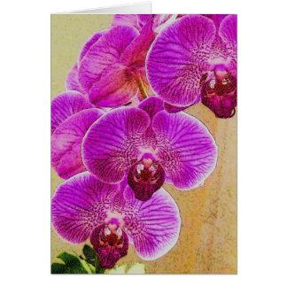 Orchidlöften kan vara personligen hälsningskort
