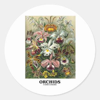 Orchids (Artforms av naturen) Runda Klistermärken