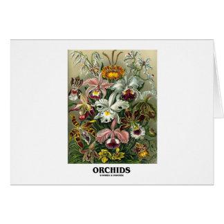 Orchids (Artforms av naturen) Hälsnings Kort
