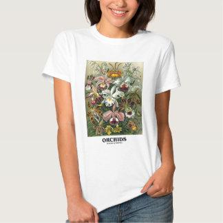 Orchids (Artforms av naturen) Tee Shirts