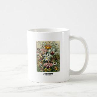 Orchids (Artforms av naturen) Vit Mugg