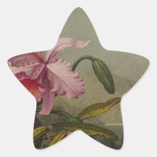 Orchids och Hummingbirds av Martin Johnson Heade Stjärnformat Klistermärke