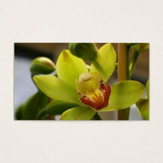 Orchidvisitkortar Visitkort