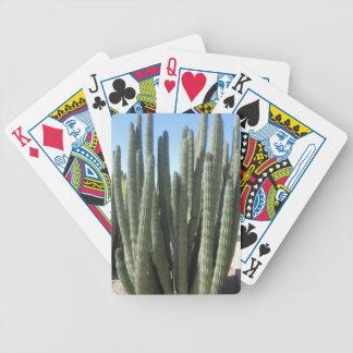 Organ leda i rör kaktusen spelkort