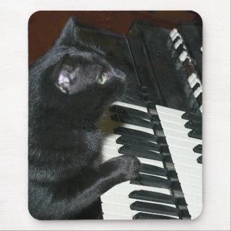 Organ som leker katten musmatta