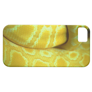 orm iPhone 5 Case-Mate skal