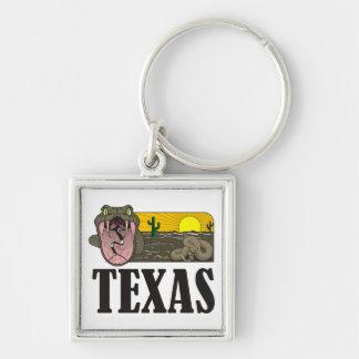 Orm som är statlig av Texas, USA: Skallerorm och Fyrkantig Silverfärgad Nyckelring
