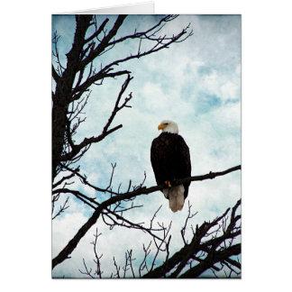 Örn i ett träd med blå himmel och moln hälsningskort