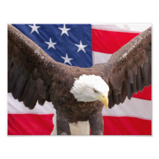 Örn med amerikanska flagganpussel fototryck