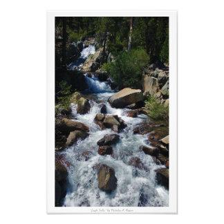 """Örnnedgångar,"" Lake Tahoe natur Fototryck"