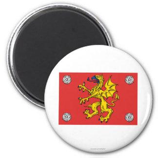 Östergötlands länflagga magnet rund 5.7 cm