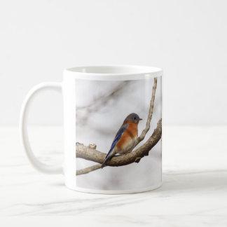 Östlig blåsångare kaffemugg