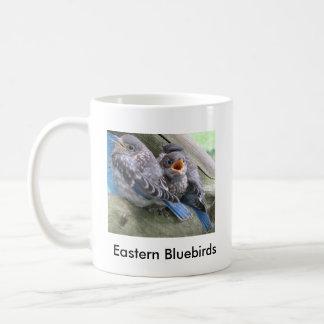 Östliga sidmugg för bluebirds 2 kaffemugg