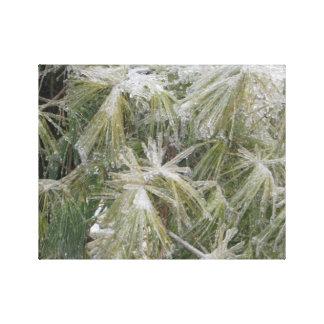 Östligt kristallgräs canvastryck