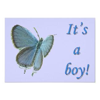 Östra-Tailed meddelande för blåttnyfödd bebispojke 12,7 X 17,8 Cm Inbjudningskort