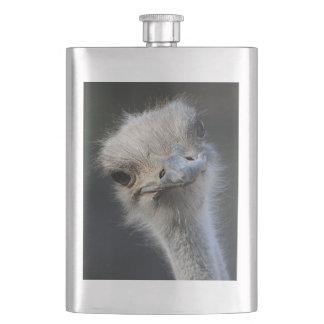 Ostrich Fickplunta