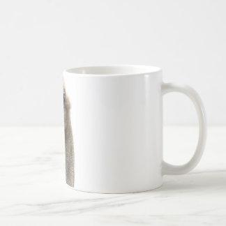 Ostrich Kaffemugg