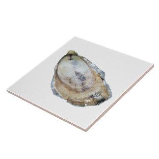 Ostronen belägger med tegel - planlägg en vit kakelplatta
