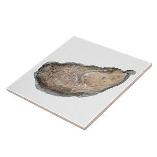 Ostronen belägger med tegel - vit för design D Kakelplatta