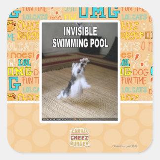 Osynlig simbassäng fyrkantigt klistermärke