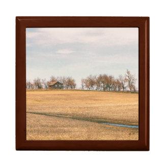 Övergett präriehemman i North Dakota #3B Smyckeskrin