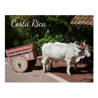 Oxcart Costa Rica vykort