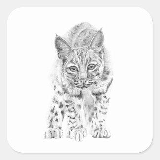 På kringstrykandet en ung Bobcat Fyrkantigt Klistermärke