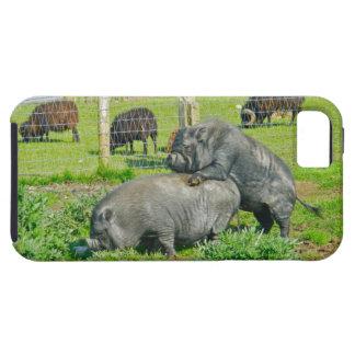 På ryggen ritt iPhone 5 Case-Mate skydd