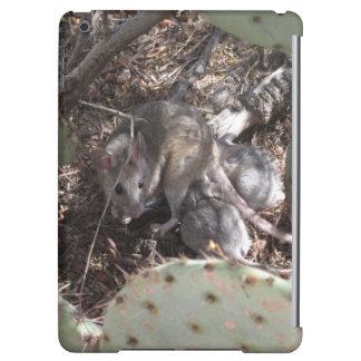 Packrat mor med babyar