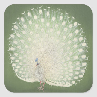 Påfågel för konst | för vintage japansk fyrkantigt klistermärke