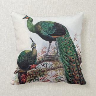 Påfågel grön peafowlpavomuticus 1872… kudde