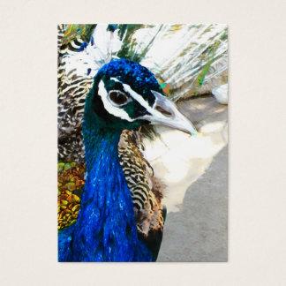 Påfågel Visitkort