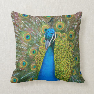 Påfågelblåtthuvud med och färgrika svanfjädrar kudde