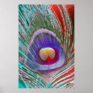 Påfågelfjäder 3 poster