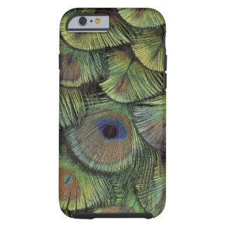 Påfågelfjäderdesign 2 tough iPhone 6 fodral