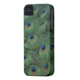 Påfågelfjädrar Case-Mate iPhone 4 Case