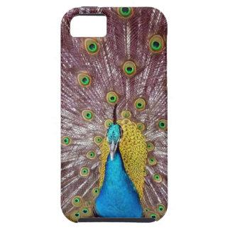 påfågelfjädrar iPhone 5 Case-Mate fodral