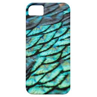 Påfågelfjädrar iPhone 5 Cases