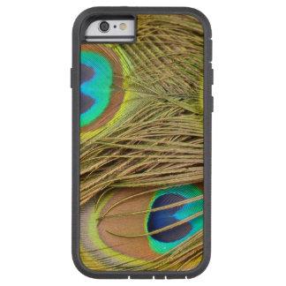 Påfågelfjädrar Tough Xtreme iPhone 6 Skal