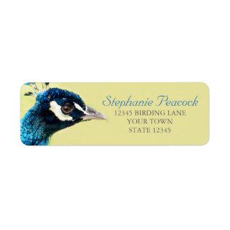 Påfågelporträtt fotograferar returetiketter returadress etikett