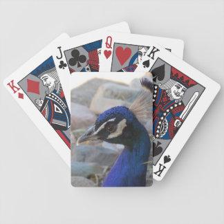 Påfågelskönhet - amerikanSouthwest Spelkort
