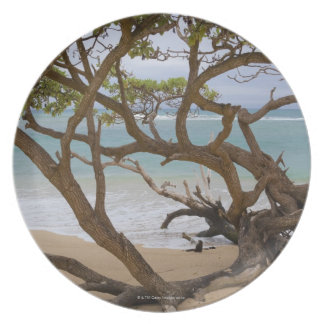 Paia fjärdstrand, Maui, Hawaii, USA Dinner Plates