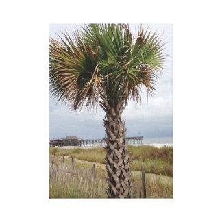 Palmträd Canvastryck