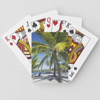 Palmträd den historiska medborgare parkerar den spel kort