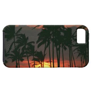 Palmträd iPhone 5 Case-Mate Skal